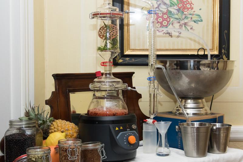 Gourmet Food & Gin Pairing