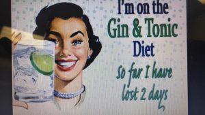 definition of a gin lady